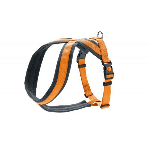 Harness London Comfort 39-47/XS-S, Orange